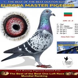 Auction 010985-BG-20 - Marian Paskov Team 1