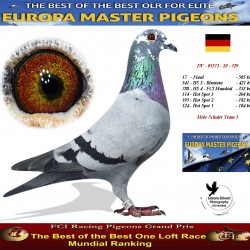 Auction DV-05573-20-329 - Mike Schuler Team 3