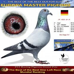 Auction DV-03253-20-19 - Peter Damps FCI