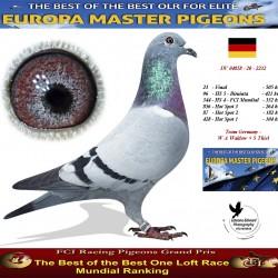 Auction DV-04858-20-2232 - Team Germany  - W A Waldow  + S Thiel