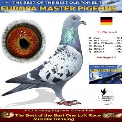 Auction DV-07001-20-638 - Joekel Skylights FCI