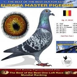 Auction Belg-20-3003430 - Emiel Denys Team A