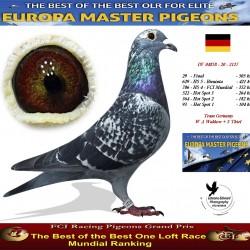 Auction DV-04858-20-2127 - Team Germany  - W A Waldow  + S Thiel