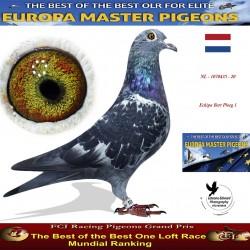 NL-1070435 - Echipa Bert Ploeg 1