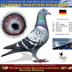 DV-05544-105 - Jurgen Stefanniszyn Team 1