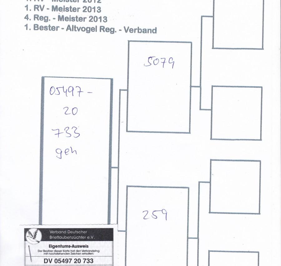 DV-05497-733-20 - Karl Hofmann