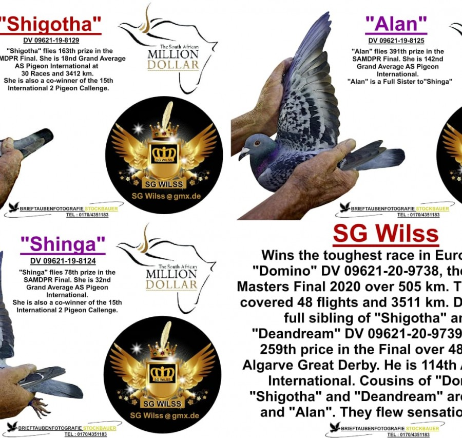 DV-09621-9704 - SG Wiess (  SC Wiess castigatorul locului 1 , in anul 2020 )