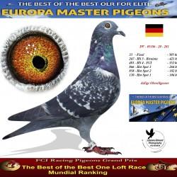 DV-05186-281-20--33-EUR0 - Adlige Oberallgaeuer