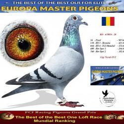 RO-670056-20+-34FINALA - Gigi Necula FCI