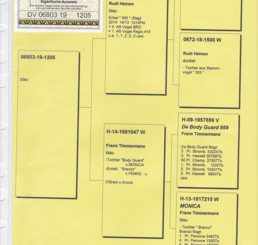 Auction DV-06803-1205 - SG Nader / Heinz