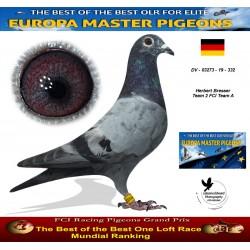 Auction DV-03273-19-332 - Herbert Bresser Team 2 FCI Team A