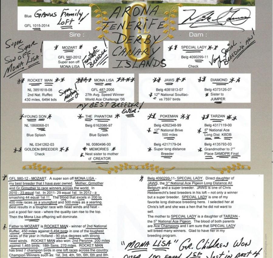 Auction DV-0800-701 Mark Buse & Family
