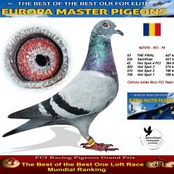 53th place - Chiroiu Iulian Nicu FCI Team A