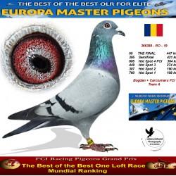 55th place - Bogdan + Carciumaru FCI Team A