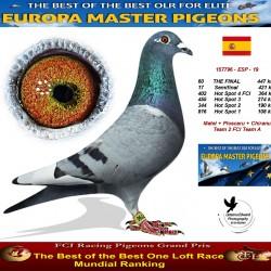 60th place - Matei + Ploscaru + Chiranu Team2 FCI Team A
