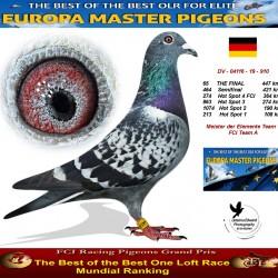 65th place - Meister der Elemente Team 1 FCI Team A