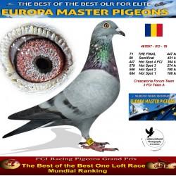 71th place - Crescatoria Forum Team 3 FCI Team A