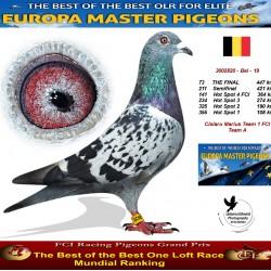 73th place - Cislaru Marius Team 1 FCi Team A