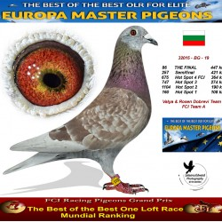 86th place - Valya & Rosen Dobrevi Team 1 FCI Team A