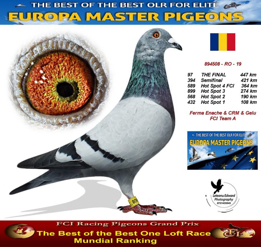 97th place - Ferma Enache & CRM & Gelu FCI Team A