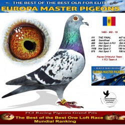 111th place - Fauna Orheiului Team 1 FCI Team A