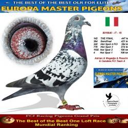 142th place - Adrian & Mogadja & Rosolino & Candela FCI Team A