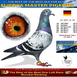 144th place - Herbert Bresser Team 1 FCI Team A