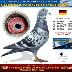 148th place - Feuriger Flugel Krosigk Team 3 FCI Team A