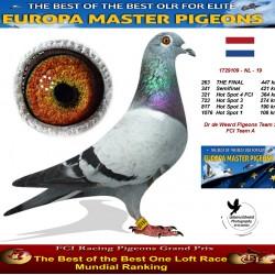 263th place - Dr de Weerd Pigeons Team 2 FCI Team A