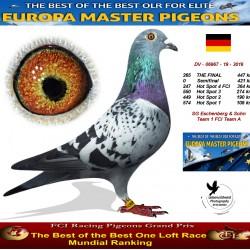 265th place - SG Eschenberg & Sohn Team 1 FCI Team A