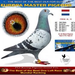 287th place - Dr de Weerd Pigeons Team 5 FCI Team B
