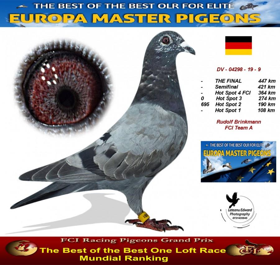 Auction DV-04298-19-9 - Rudolf Brinkmann FCI Team A