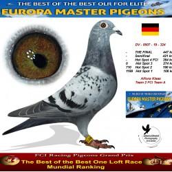 Auction DV-0507-19-324 - Alfons Klaas Team 2 FCI Team B