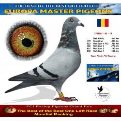 Auction 1768501-NL-19 - Team Florin FCI Team A
