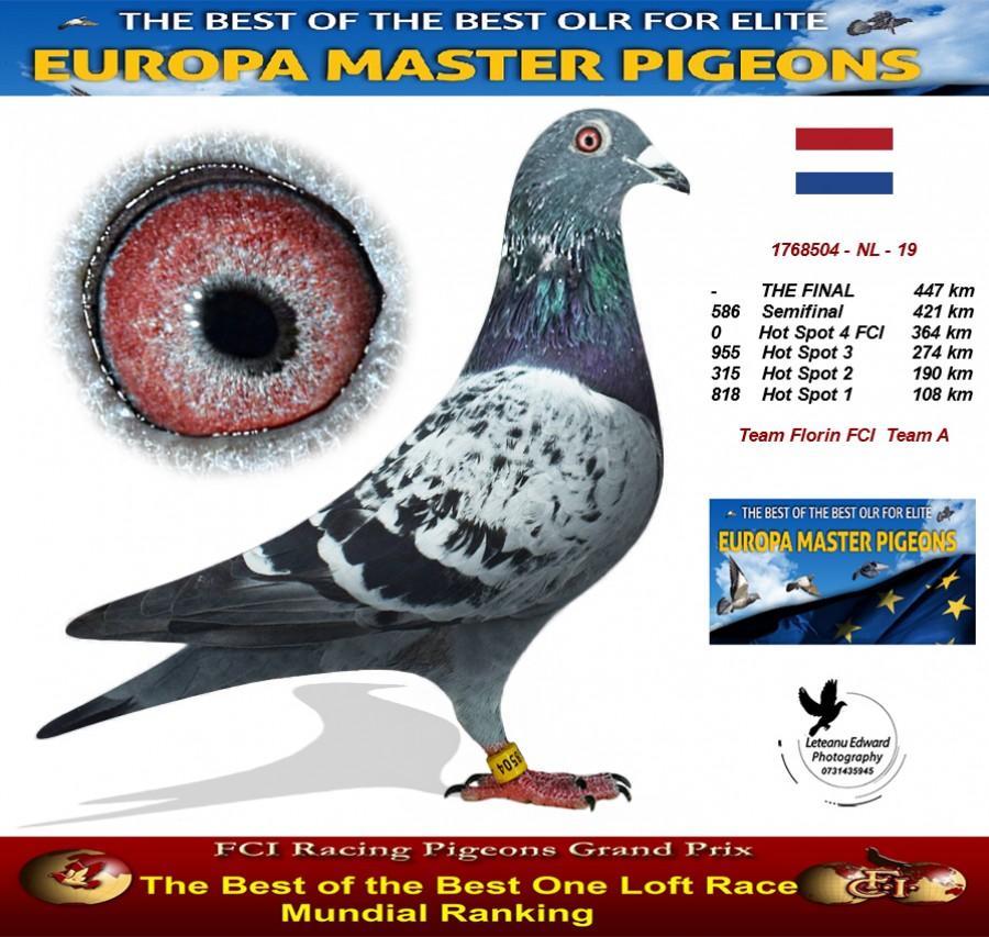 Auction 1768504-NL-19 - Team Florin FCI Team A