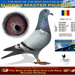 Auction 467008-RO-19 - Crescatoria Forum Team 2 FCI Team A