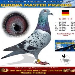 Auction 09580-19-25 Team Rodertalflieger FCI Team A