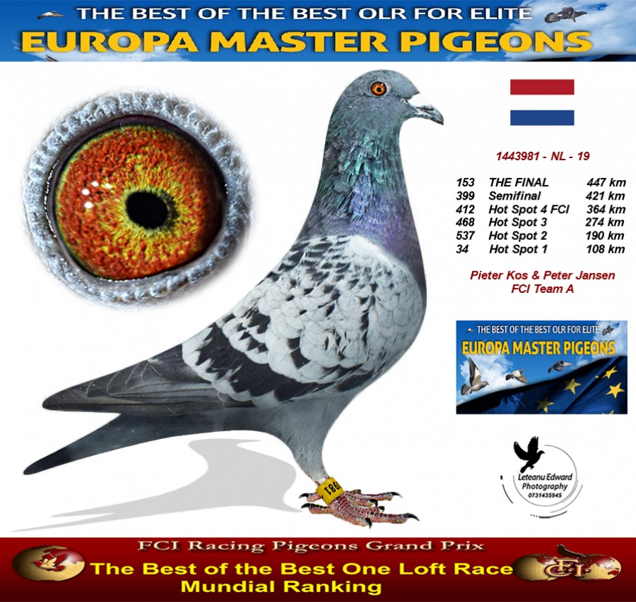 153th place - Pieter Kos & Peter Jansen FCI Team A