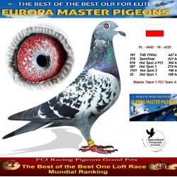 181th place - Master Team 1 FCI Team A