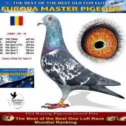 187th place - Cazacu Mihai - FCI Team A