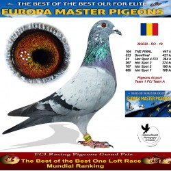 164th place - Pigeons Airport Team 1 FCI Team A