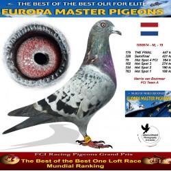 175th place - Harrie van Boxmeer FCI Team A