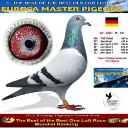 176th place - Team 3 Ostseerennen.de FCI Team A