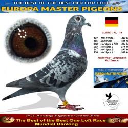177th place - Team Weis-Jungfleisch FCI Team A