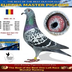 185th place - Picleanu Sorin Team 1 FCI Team A