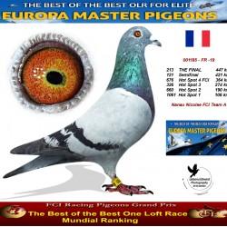 213th place - Nanau Nicolae FCI Team A