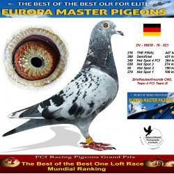 216th place - Brieftaubenfreunde OWL Team 4 FCI Team B