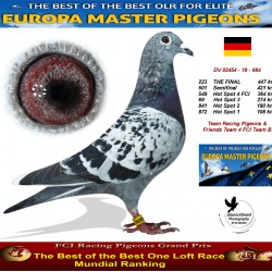 223th place - Team Racing Pigeons & Friends FCI Team B