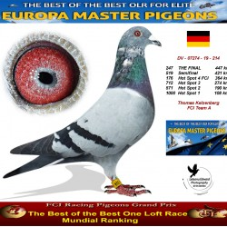 247th place - Thomas Kelzenberg FCI Team A