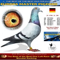 248th place - Team Below & Wagner Team 2 FCI Team A